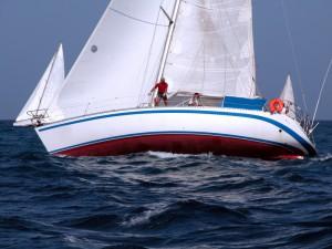 choroba-morska-300x225